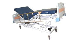 Motorized Height Adjustable Bed with Mattress